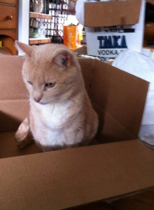 This is my box.  Try again.